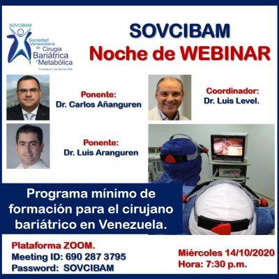 Programa mínimo de formación para el cirujano bariátrico en Venezuela.